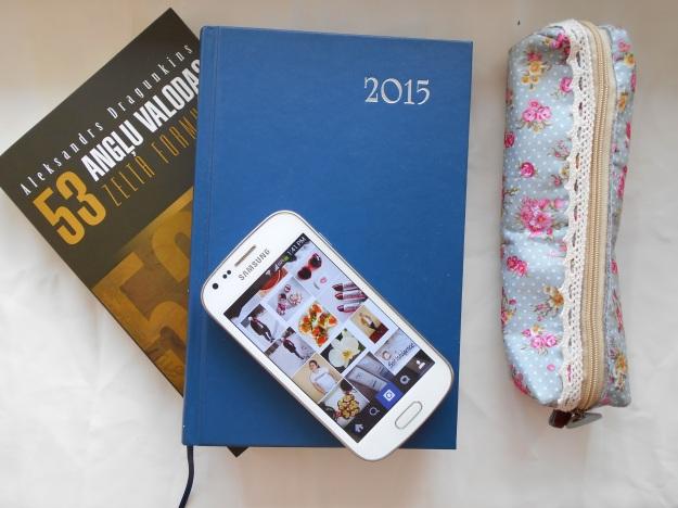 anita's diaries